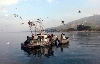 שייט דייג – לקבוצות